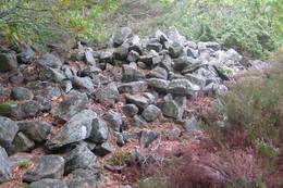 Litt av gravrøysa innenfor Geitetangen. - Foto: Floke Bredland