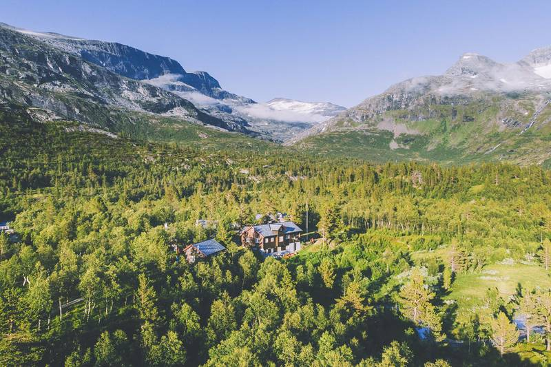 Reindalen er en uvanlig vakker dal med gammel furuskog og et rikt planteliv.