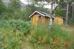 Ventebu -  Foto: Jarle Nilsen