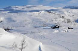 Torvedalen 09.02.2016 - Foto: Oddvar Drevsjø
