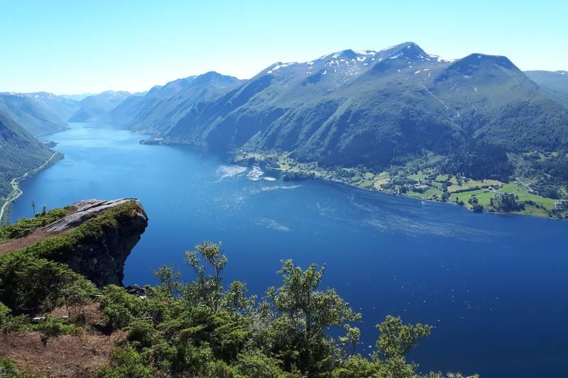 Galten høgt over Dalsfjorden