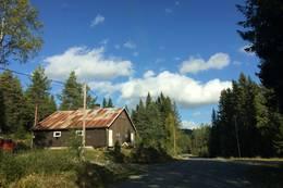 Midtskogkoia -  Foto: Karen Gjermundrød