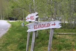 Elvadalen -  Foto: Torill Opedal Hauge