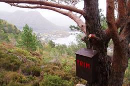 Trimpost på Løypingsåsen -  Foto: Ukjent