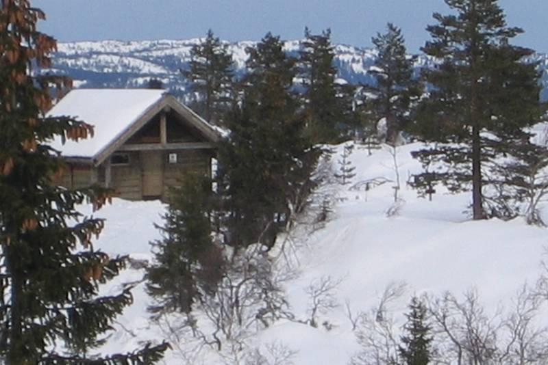 Sveinsbu vinter
