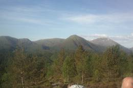 Utsikt fra toppen av Solbakkefjellet -  Foto: Ukjent