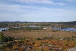 Utsikt mot Strandavatnet - Foto: Kari Raaket