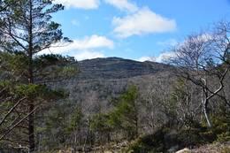 Ulserhaug, turen sitthøgaste punkt i sikte - Foto: Roald Årvik