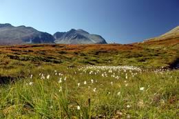 Rondane  - Foto: Finn Grove-Knutsen