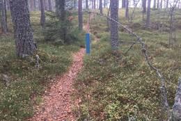 10 turposter i Løten -  Foto: Margrete Ruud Skjeseth