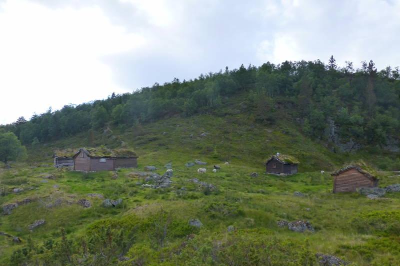 Ytrehornsetra som ligg bakpå platået.