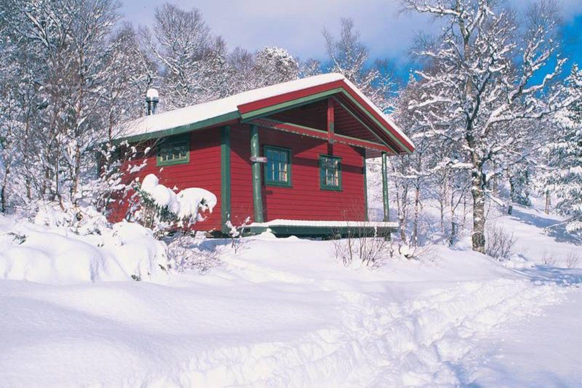 Olabu i vinterdrakt