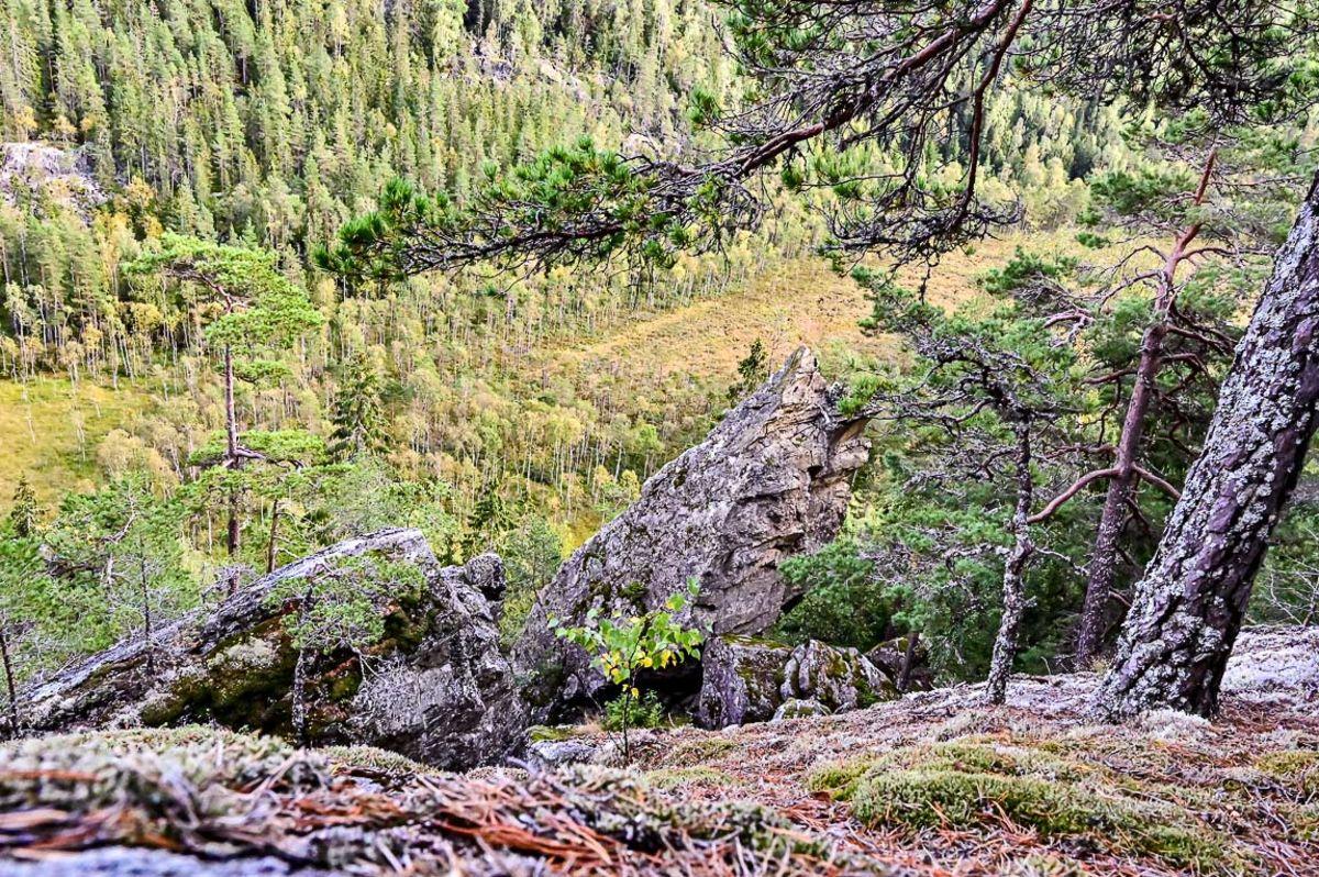 Utsikt til Hærfangkjerka og Slorene fra Hærfangen