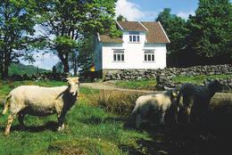 Gaudland - Foto: Stavanger Turistforening