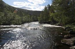 Elva ut fra Svartvatnet kan muligens vades - Foto: Kjell Fredriksen