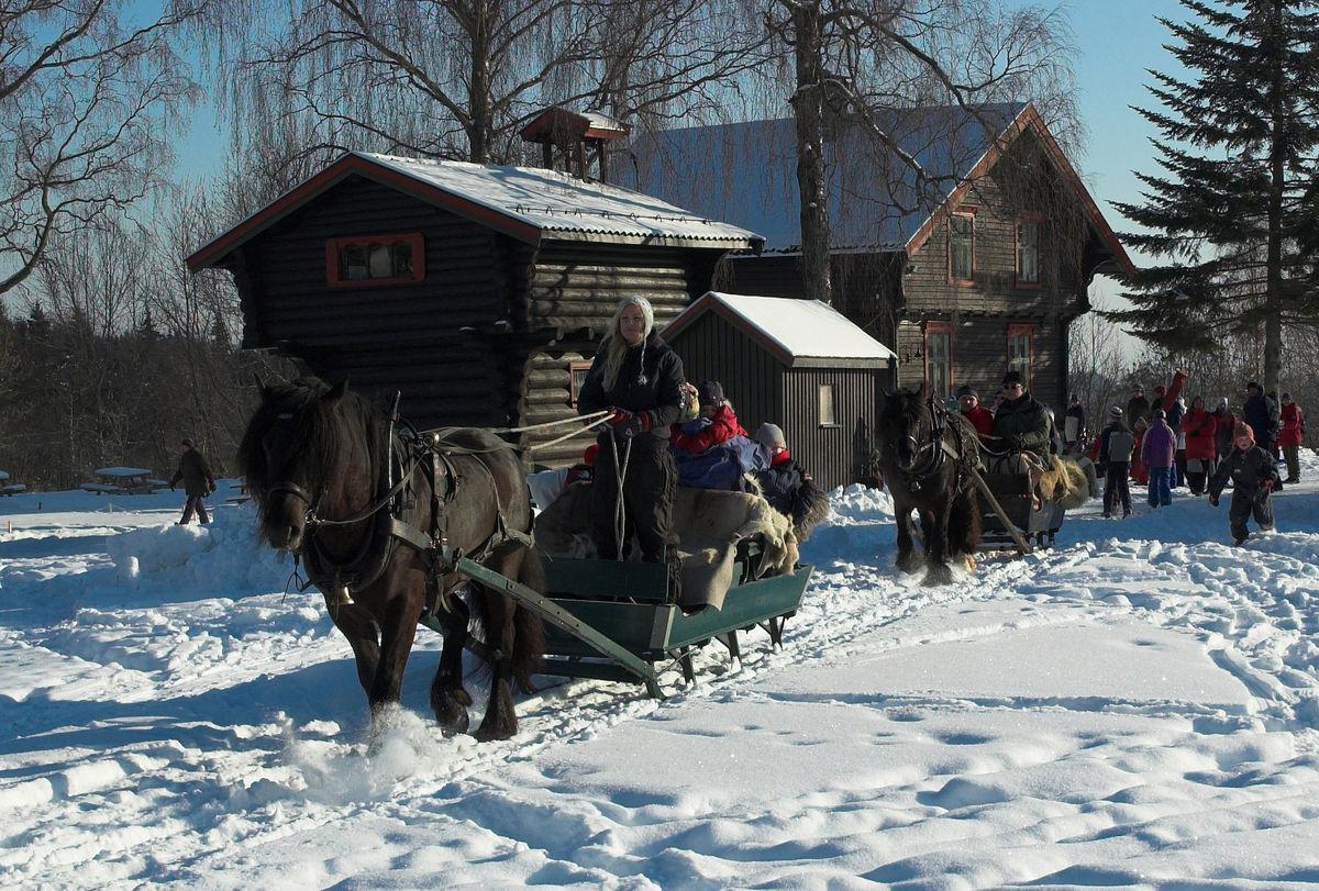 Hestekjøring er alltid en populær aktivitet for barna.