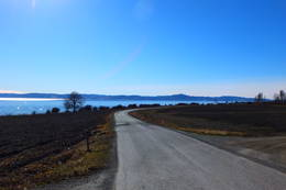 Veien mot Sørgrenda -  Foto: Oddlaug Lindgaard