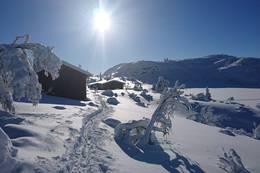Vinter og Sol - Foto: