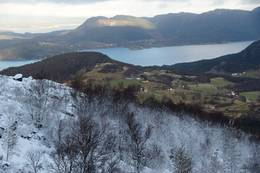 Over tregrensa, utsikt ned mot Vikebygd - Foto: Roald Årvik