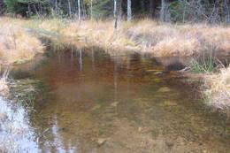 Litt overvann i løypa nord for Gloppa. - Foto: Floke Bredland