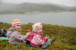 Fin utsikt til Skulsfjord. - Foto: Åshild Ønvik Pedersen