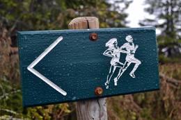 Fint å jogge i siløypetraseen nedenfor Lunkefjell -  Foto: Ukjent