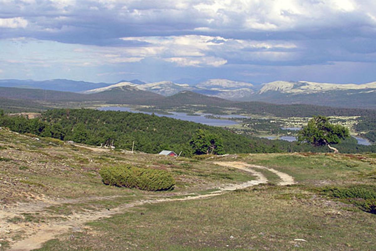 Utsikt fra Reinsleia mot Haustsjøen.