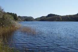 Tjomsevannet - Foto: Ukjent