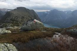 Utsikt mot Høgenipa frå Skafonnfjellet - Foto: Anne Cecilie Kapstad
