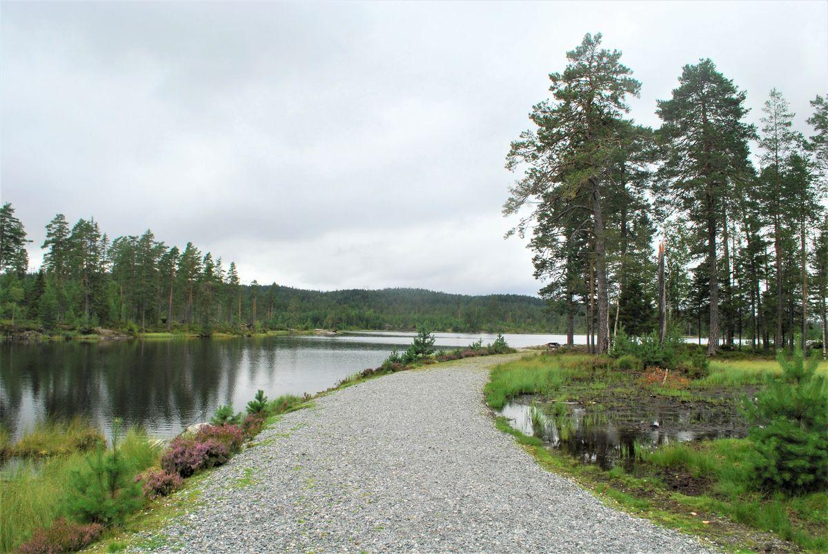 Deler av området ved vannet er gruslagt, for fremkommelighet med rullestol.
