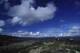 Lyngbua, Hedmark - Foto: Per Roger Lauritzen