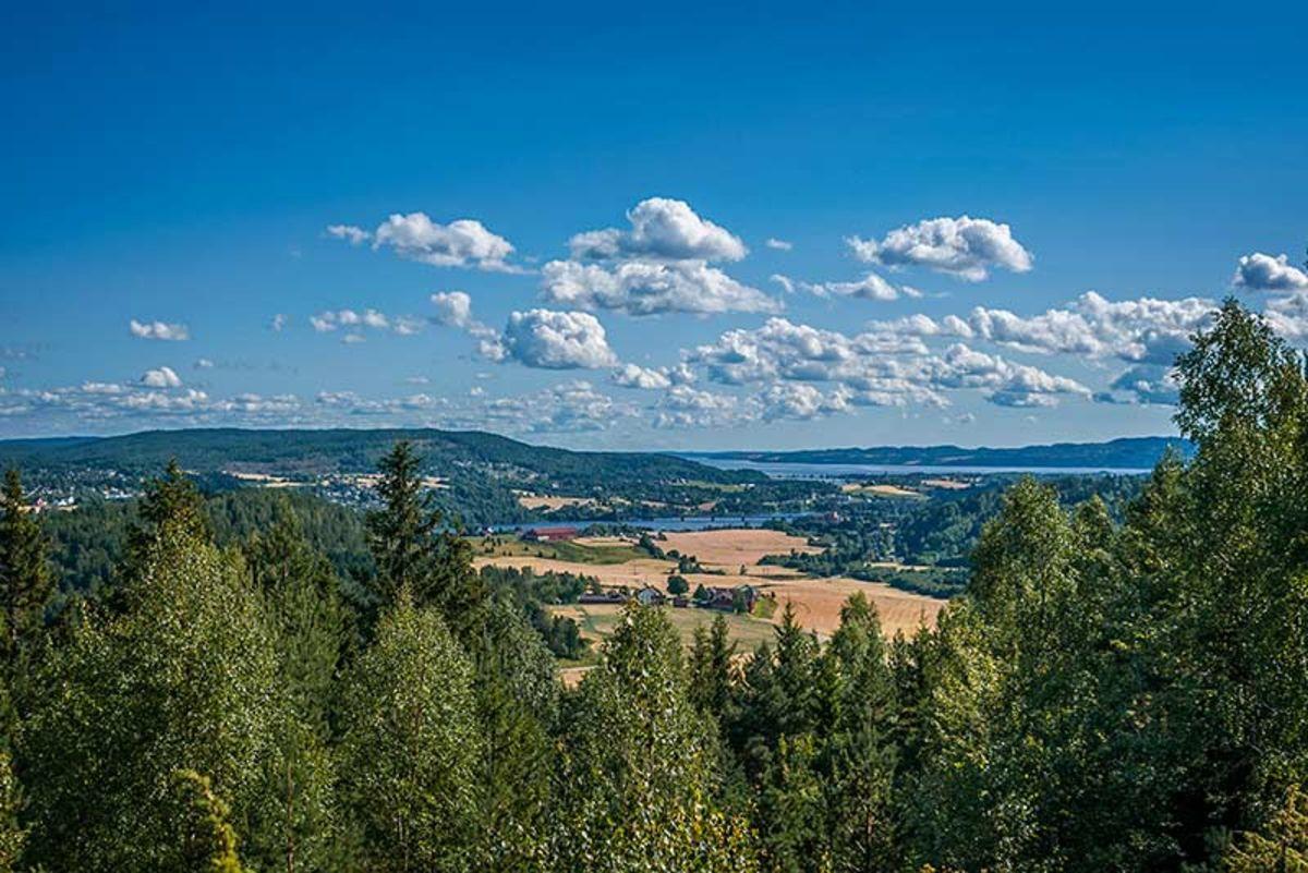 Utsikt fra Holtåsen