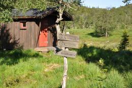 Granbustøyl - Foto: Sveinung Tubaas