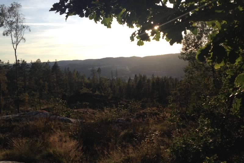 Utsikt over Smååsane