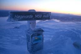 Morgenstund har gull i munn på Høgevarde 4.januar 2009 -  Foto: Bente Helle
