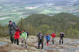 Trondheimsmarka - Foto: Den Norske Turistforening