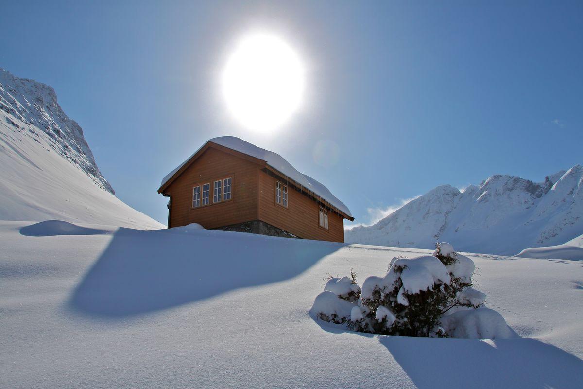 Velleseter om vintern