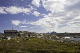Sommer - Foto: Haakon Langmo