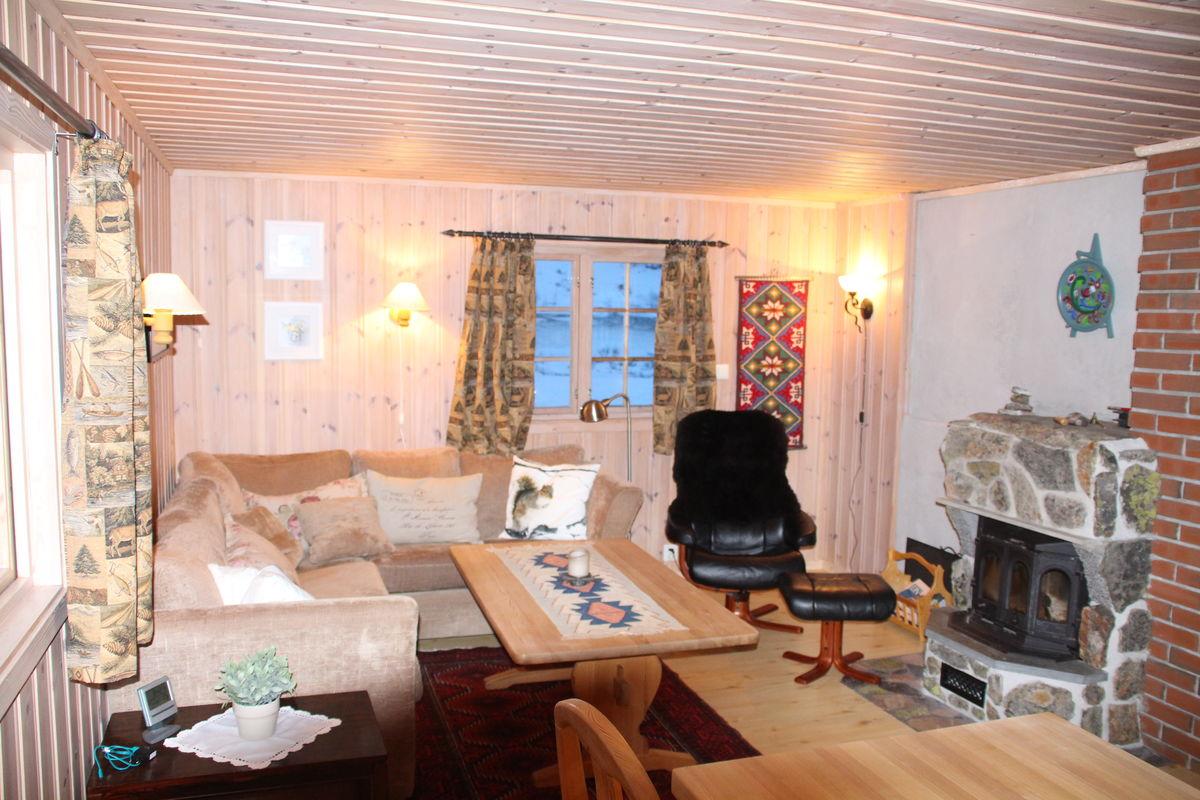 Trivelig stue i Skarvheim