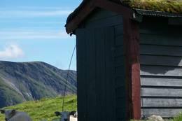 Dovakter på Fivla-hytta i Breheimen  - Foto: Eva Breuer