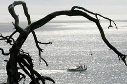 Utsyn mot havet halveis på rundturen -  Foto: Aust-Agder turistforening