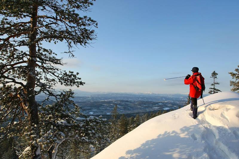Utsikt mot vest på veg til toppen på trugerFoto: Ottar Kaasa