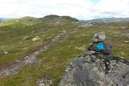 Utsikt nordover mot Homvassnatten - Foto: Britt Helene Fossøy