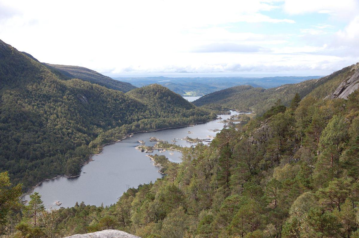 Over tregrensa, utsikt til Longavatnet