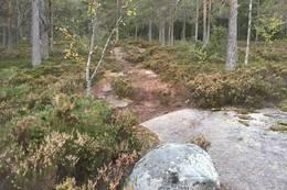 Ved denne steinen møtes en annen sti. - Foto: Einar Vestnes
