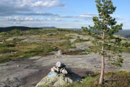 Breskurte svaberg oppe på ryggen av Bryggefjell - Foto: Arne W. Hjeltnes