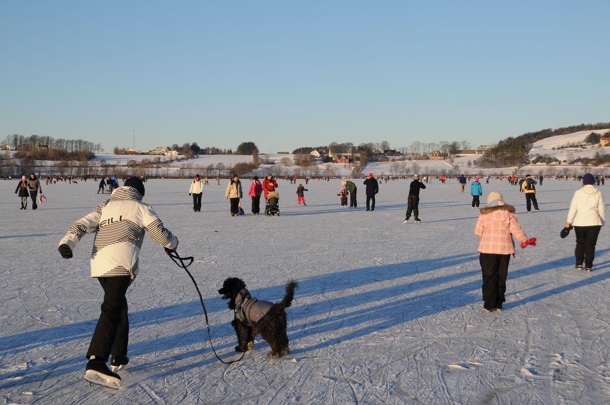 Is skaper aktivitet på Stokkavannet