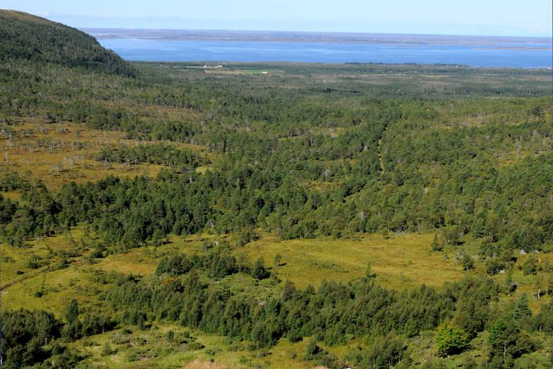Utsikt Gullsteinvollen og utover dalen