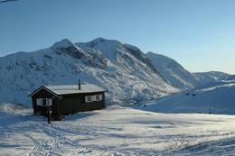 Lossihytta - Foto: Narvik og Omegn Turistforening
