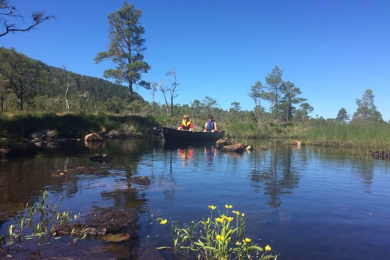 Padletur i kano er en fin aktivitet ved Trollstua, kanoer ligger i naustet